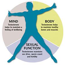 Colorado Springs Hormone Therapy for Men